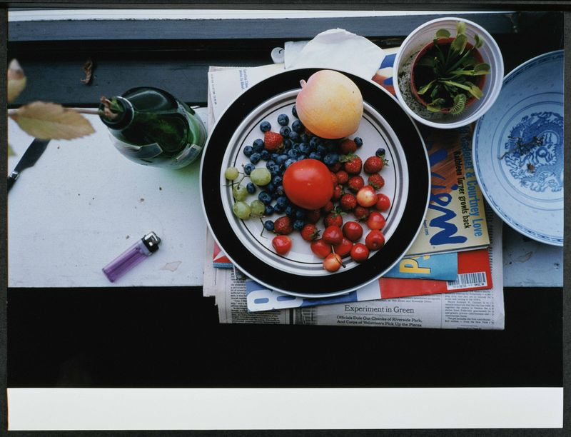 24_Wolfgang Tillmans_Summer still life, 1995